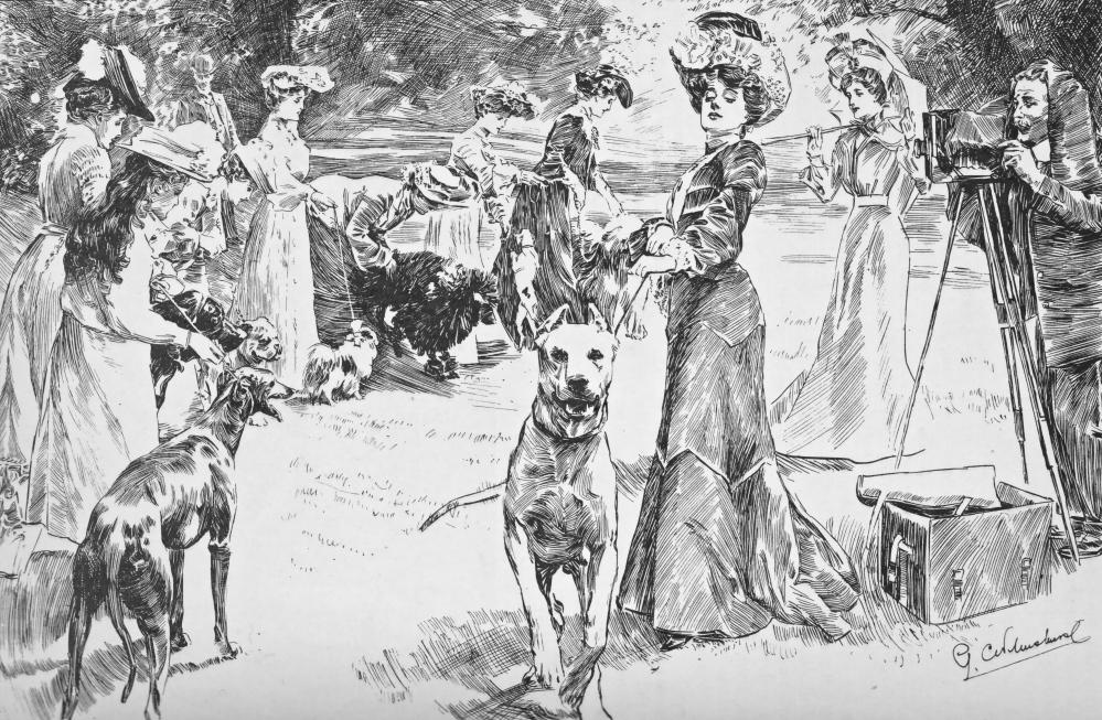 LONDON MAGAZINE 11 1904 DOG SHOW
