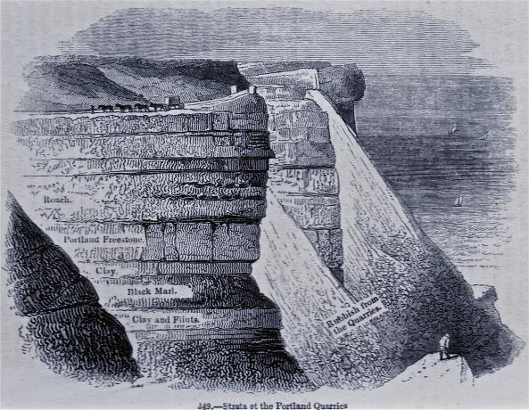 rock strata portland