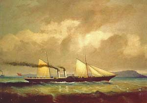 Cygnus_Ouless_1867